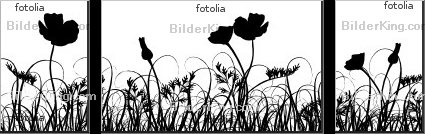 Print details - Tolchik : Grass and poppy, vector