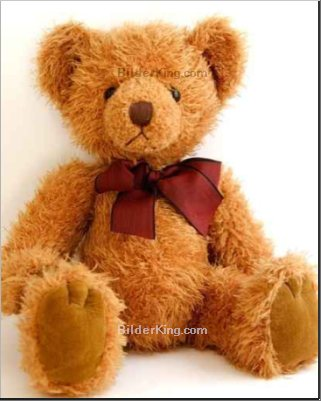 Leinwandbild - Jason Walsh : teddy bear with red bow sitting
