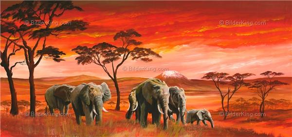 wandbild mia morro wilde elefanten in afrika. Black Bedroom Furniture Sets. Home Design Ideas