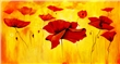 mural Mia Morro - Red Poppy