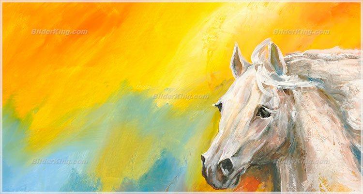 Wandbild mia morro wildes pferd wandbilder leinwanddruck keilrahmenbilder kunstdruck - Wandbilder keilrahmenbilder ...