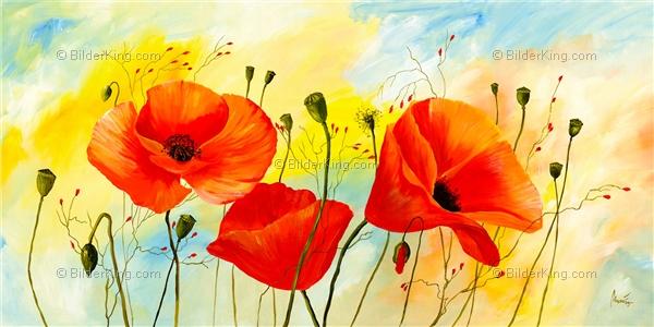 Wandbild mia morro poppy colors wandbilder leinwanddruck keilrahmenbilder kunstdruck - Wandbilder keilrahmenbilder ...