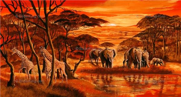 Wandbild mia morro wildes afrika wandbilder - Leinwandbilder malen ...
