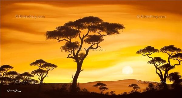wandbild chanel simon afrikanischer sonnenuntergang. Black Bedroom Furniture Sets. Home Design Ideas